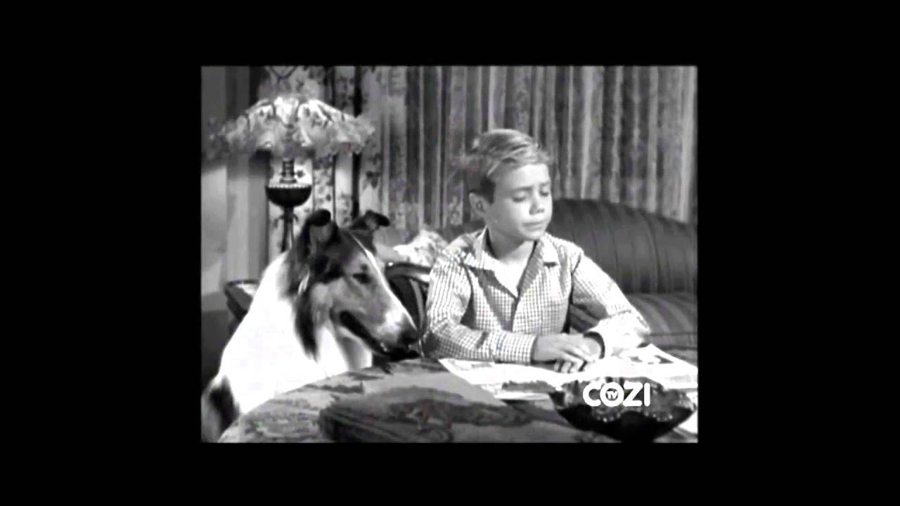 "Download Lassie - Episode #297 - ""The Fawn Patrol"" - Season 9, Ep. 6 - 11/04/1962"
