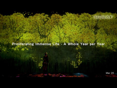 Proliferating Immense Life - A Whole Year per Year
