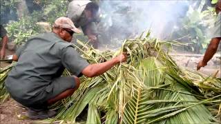 How To Cook Food Undergound -  Fiji Lovo, South Pacific