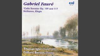 Sonata No. 1 in D Minor, Op. 109: II. Andante