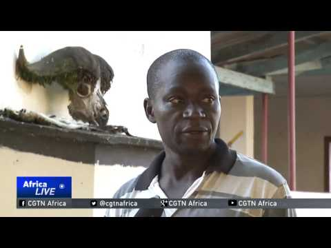 Communities in Zimbabwe adopt plan to reduce human-wildlife conflict