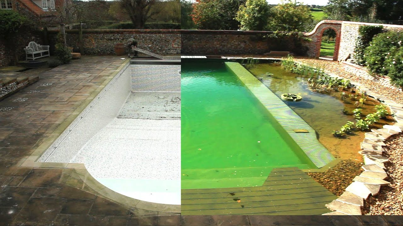 Converting A Chlorine Pool To Organic Pool In 1 Minute Youtube
