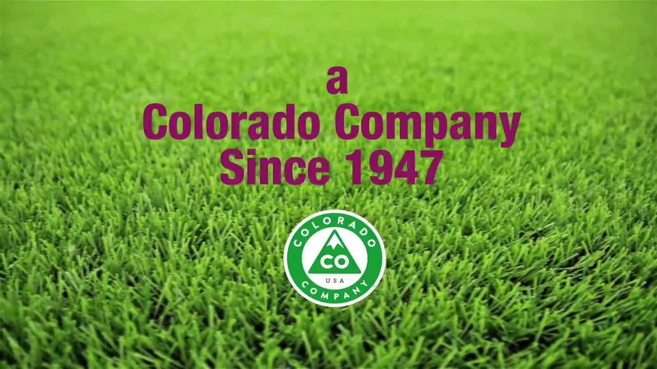 Custom Lawn Care Services Denver And Along The Front