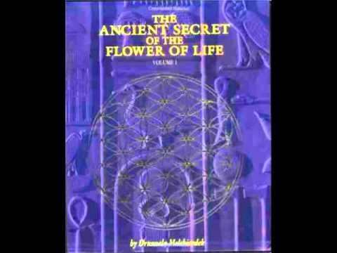 Ancient Secret of the Flower of Life Volume One Chapter One