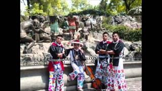 Huichol Musical un dia ala vez