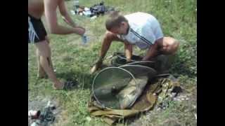 Удачная рыбалка в Масловке Курская обл.