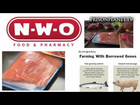 Aspartame, Fluoride, MSG (exito toxins)... the truth about our food, Infowars Special Report