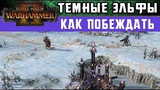 🇷🇺 Темные Эльфы Как побеждать за них в Total War Warhammer 2 (с переводом на русский)
