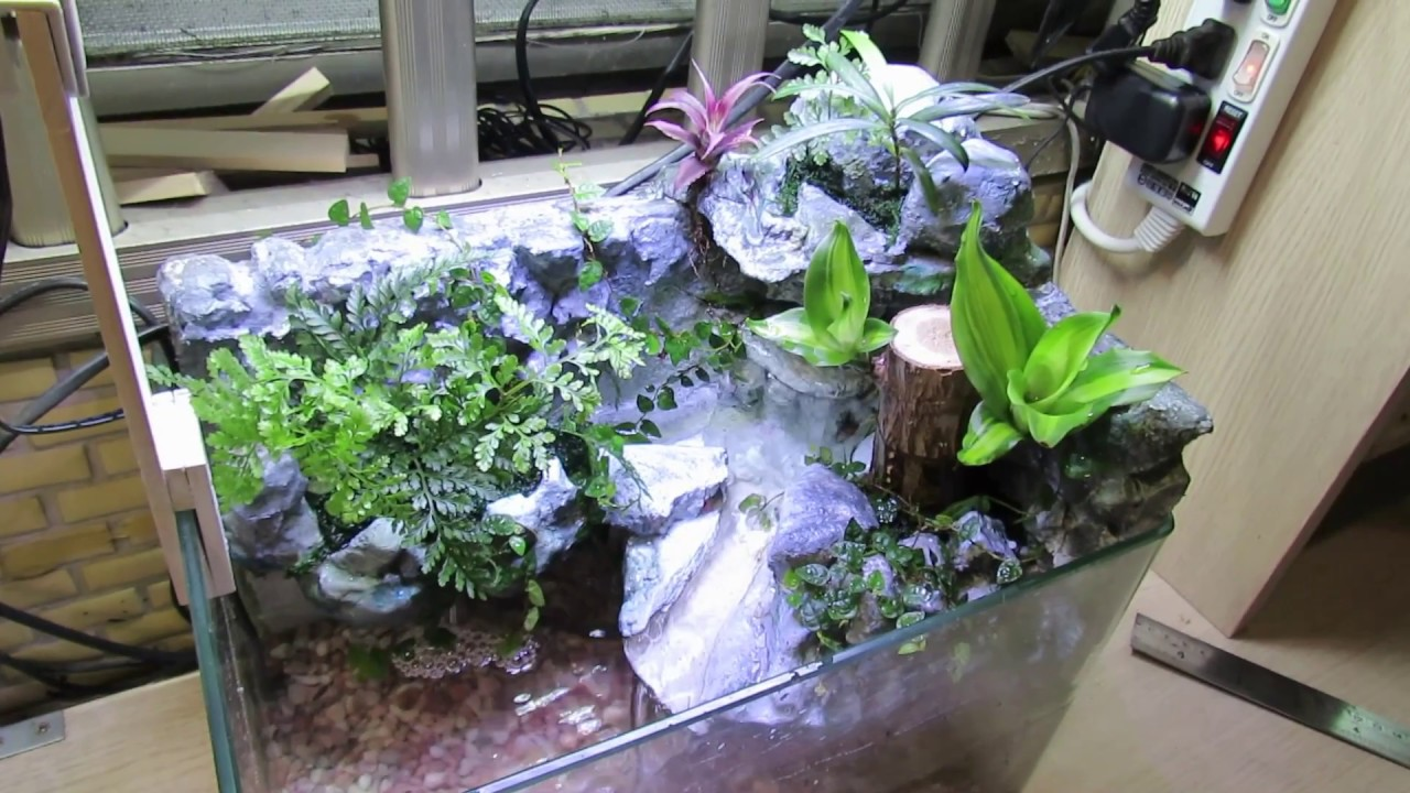 自然生態魚缸--保麗龍DIY - YouTube