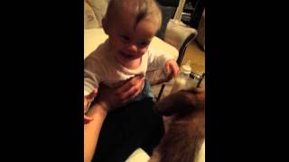 gülen bebek ( elara zara )