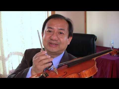 ~ All About The Violin Bridge ~ by Daniel Olsen