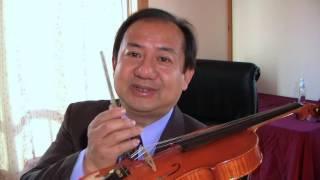 all-about-the-violin-bridge-by-daniel-olsen