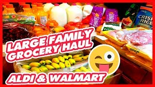 Large Family Grocery Haul   ALDI & Walmart   Grocery Therapy Needed 😜