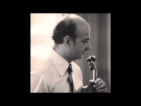 Josef Sivo - Schubert Violin sonata D major D. 384 1mvt