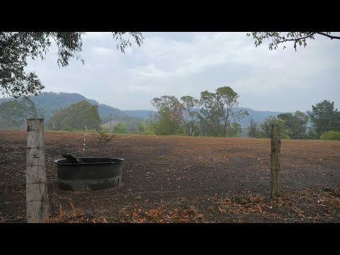 Australia: Rain Brings Some Relief On The Southeast Coast Of NWS   AFP