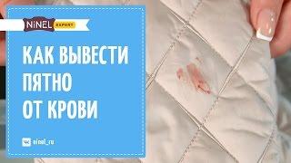 видео Как вывести пятна от крови: с одежды, ковров