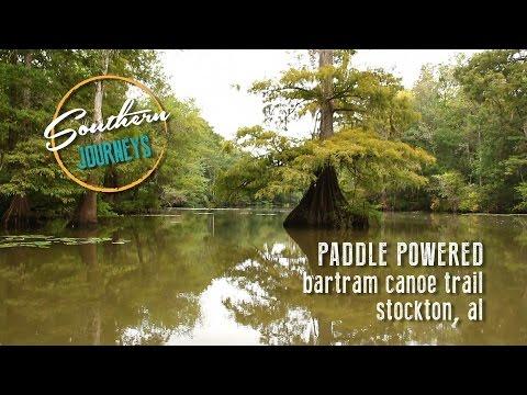 Paddle Powered: Bartram Canoe Trail