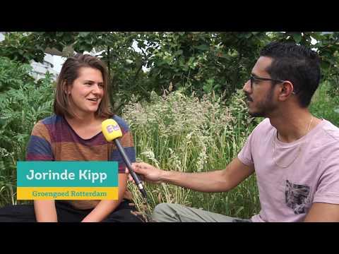 Rotterdam Lezing 2018 - onorthodoxe armoedebestrijding