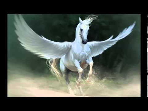 Pegasus at Mount Markham Middle School 1986
