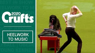 International Freestyle Heelwork To Music  Part 3 | Crufts 2020