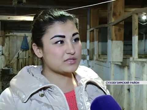 Жительница Сухобузимского района смогла организовать работу собственной свинофермы