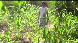 Permaculture Internships In MALTA