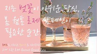 [샴페인 리뷰] 벚꽃 색의 와인이 있다? 스테이크와 레…