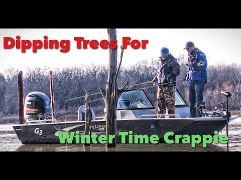 Winter-Time Dippin' Trees For Crappie