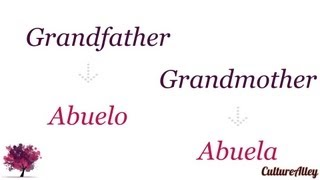 Family Relations Spanish Grandfather Grandmother Friend Uncle Aunt