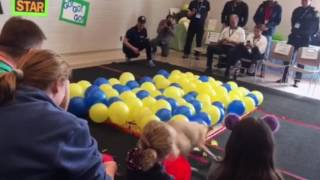 Toby the Whippet: Attempts balloon popping Guinness World Record