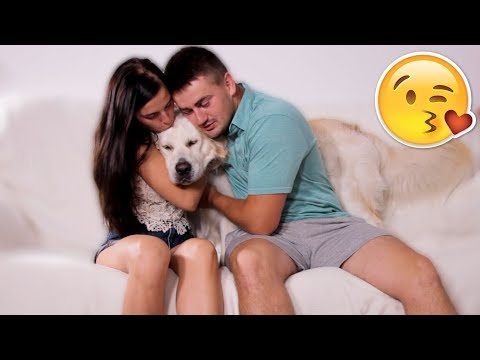 What Does My Dog Do When I Kiss My Wife