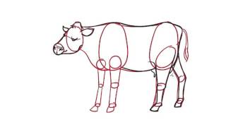09 Learn how to draw a Cow the easy way for kids