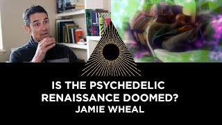 Is the Psychedelic Renaissance Doomed? Jamie Wheal