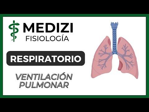 Clase 37 Fisiología Respiratoria - Ventilación Pulmonar