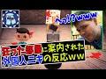 【あつ森】視聴者のやべえ部屋に案内された外国人ニキの反応がめっちゃツボww【日本語字幕付き/ あつまれどうぶつの森】