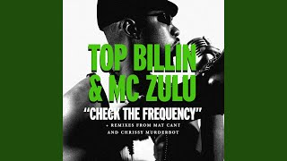 Check The Frequency feat. MC Zulu (instrumental)