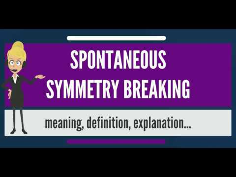 What is SPONTANEOUS SYMMETRY BREAKING? What does SPONTANEOUS SYMMETRY BREAKING mean?
