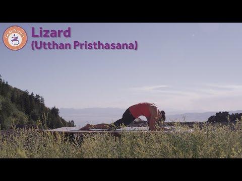 Lizard Pose (Utthan Pristhasana)