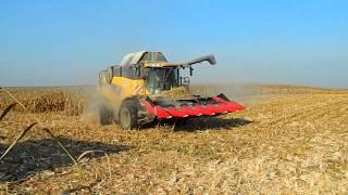 Kukorica betakarítás 2011