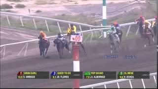 Vidéo de la course PMU PREMIO YUYO BRUJO