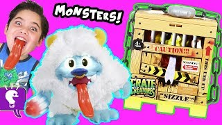 CRATE CREATURES Toy Review and GAME PLAY with Fuzzy MONSTERS by HobbyKidsTV
