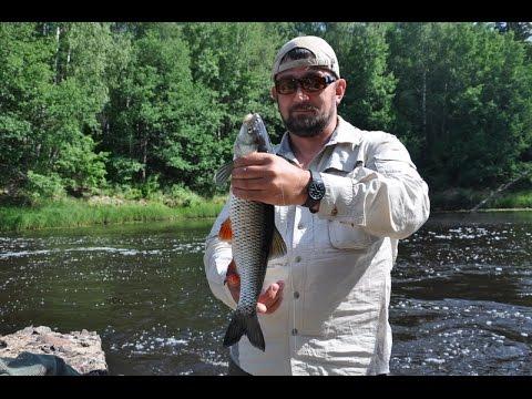 ловля голавля в нижегородской области