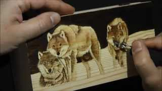 Pyrography Project 45