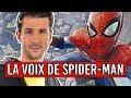 Donald Reignoux, la voix française de SpiderMan : les coulisses du doublage