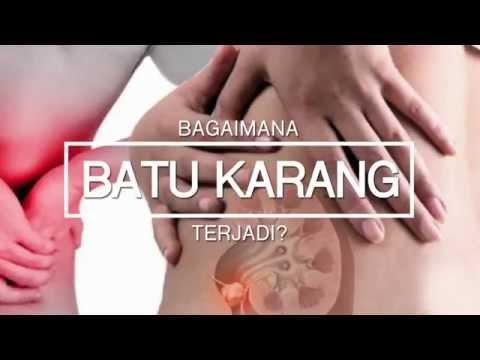 PUNCA BATU KARANG BY GLAMOHEALTH PEMECAH BATU KARANG
