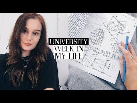 university week in my life #21: preparing for exams, meetings & mini primark haul