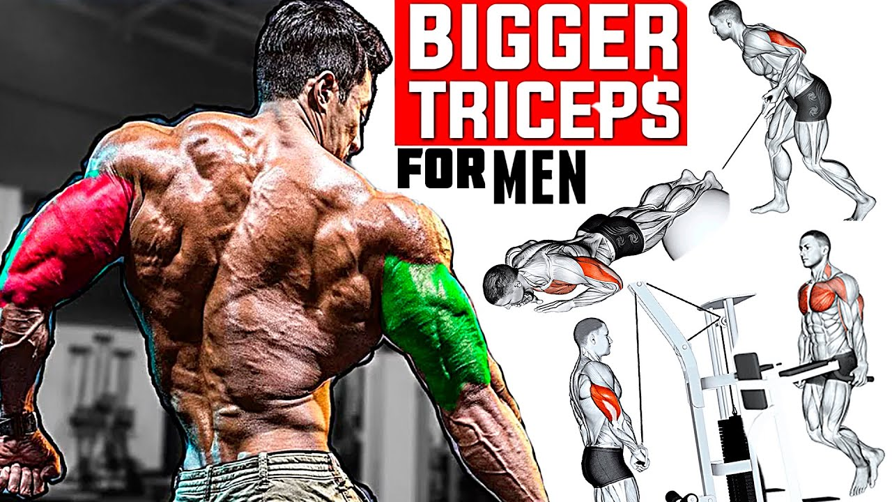 How to Build Your Massive Triceps (11 Exercises You Should Be Doing)