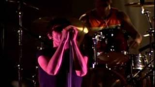 """The Tears Seoul Live 01 """"The Asylum"""""""
