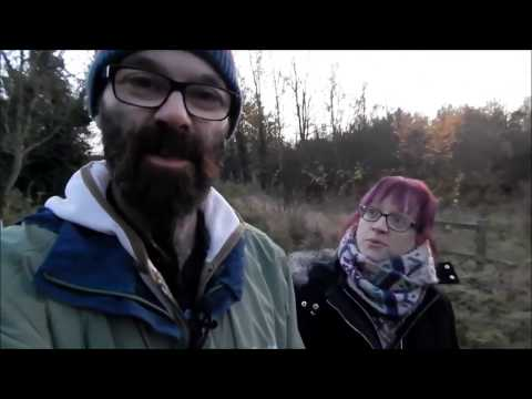 An Autumn Walk To The River Tyne