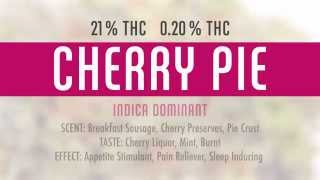Treecity Health Collective - Mmmp - Dispensary Near Grand Rapids Michigan - Cherry Pie